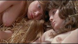 Prime Cut (1972)